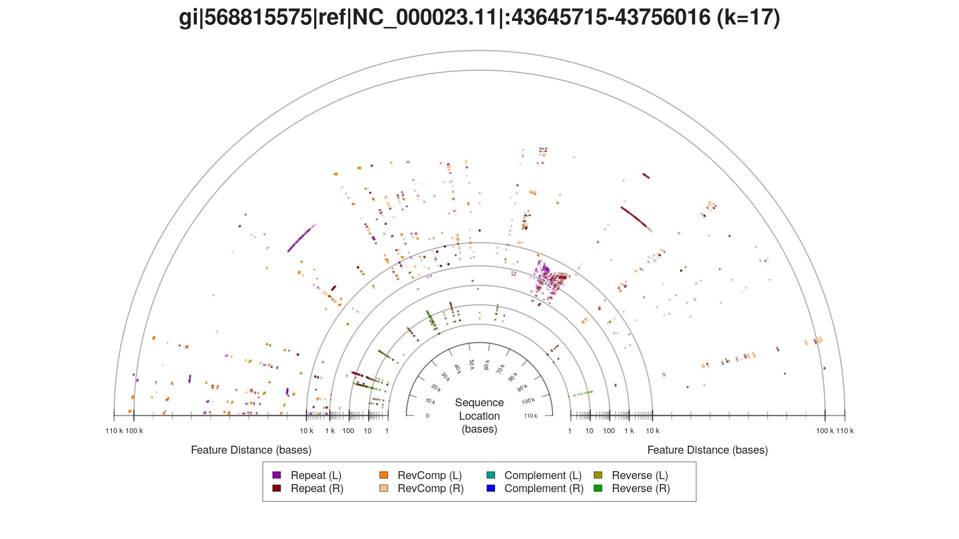 "Repeat patterns represented as a semicircular ""sunset"" plot"